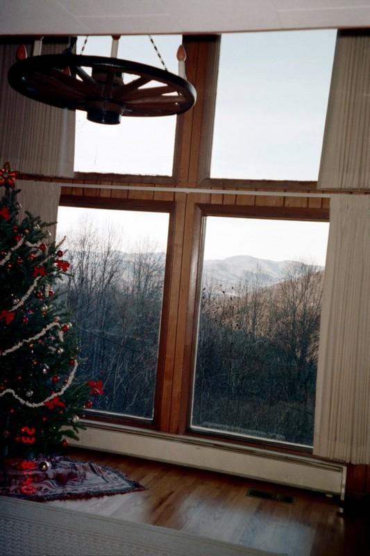 Christmas tree before Christmas
