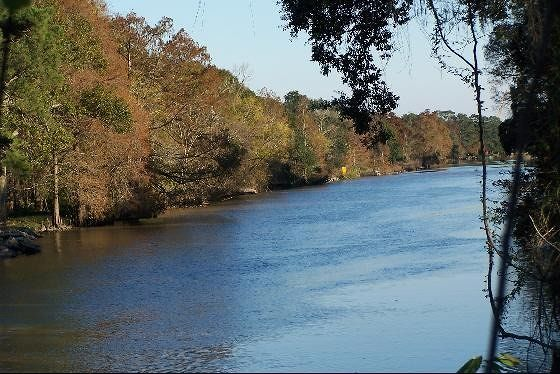 Down the Teche from the boardwalk