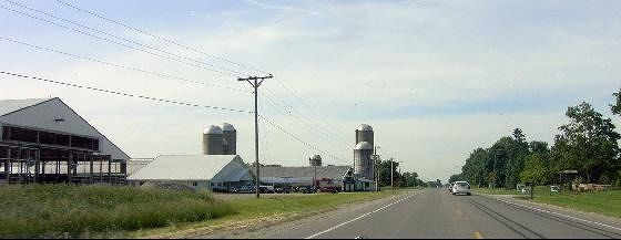 Dairy Farm north of town