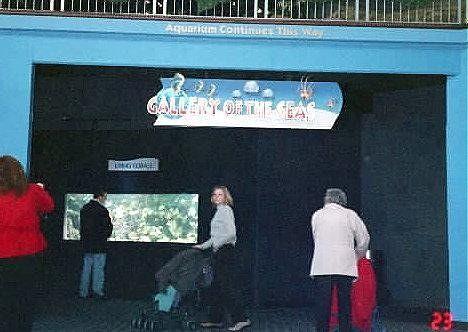 Next section of the aquarium