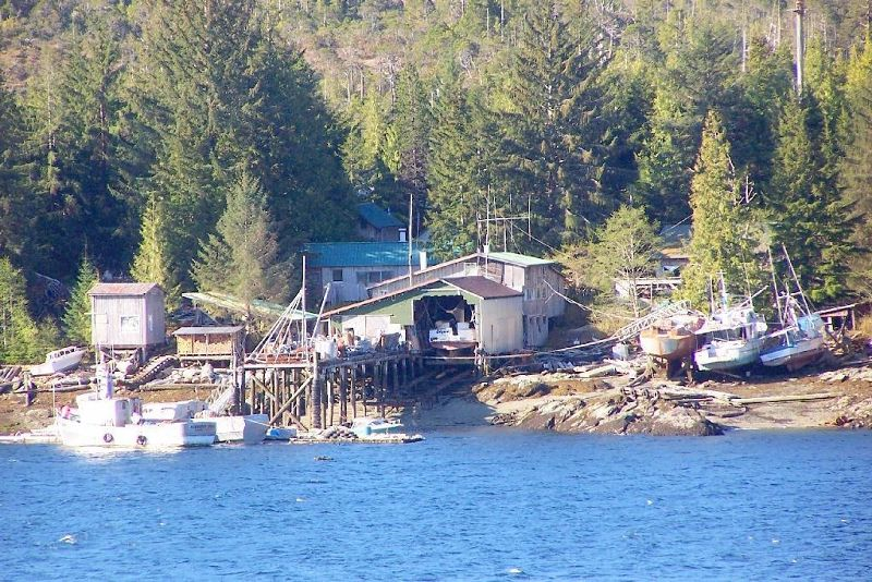 Fishing boats on the island across from Ketchikan
