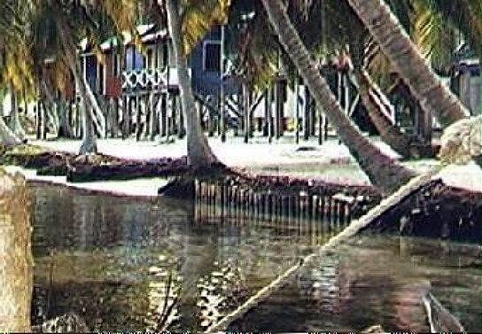 Beach in front of Ignacio's Huts