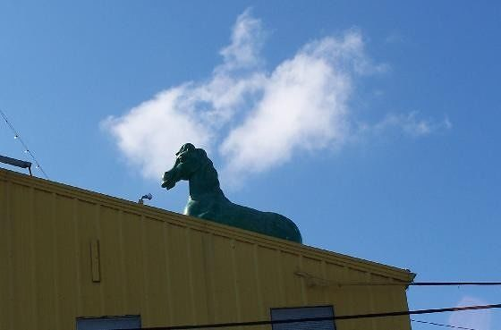 Why is a horse on the roof?