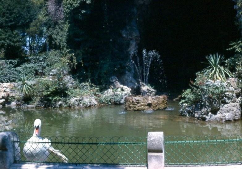 Grotto in garden