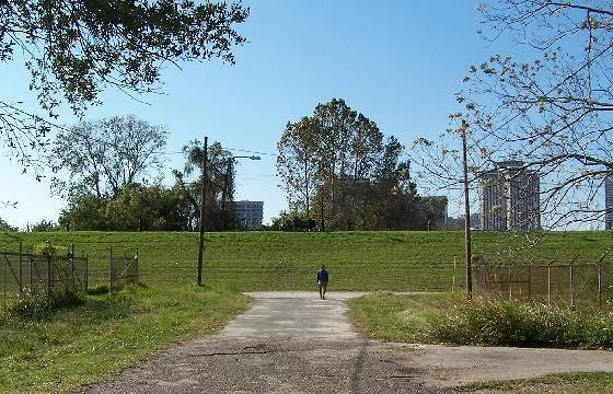 large_2147115-Walking_on_the_Levee_Algiers.jpg