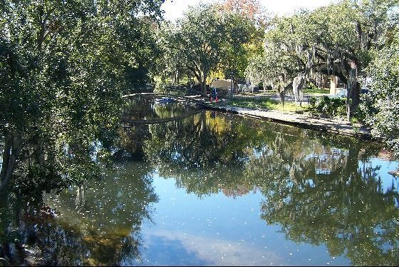 Bayou in City Park