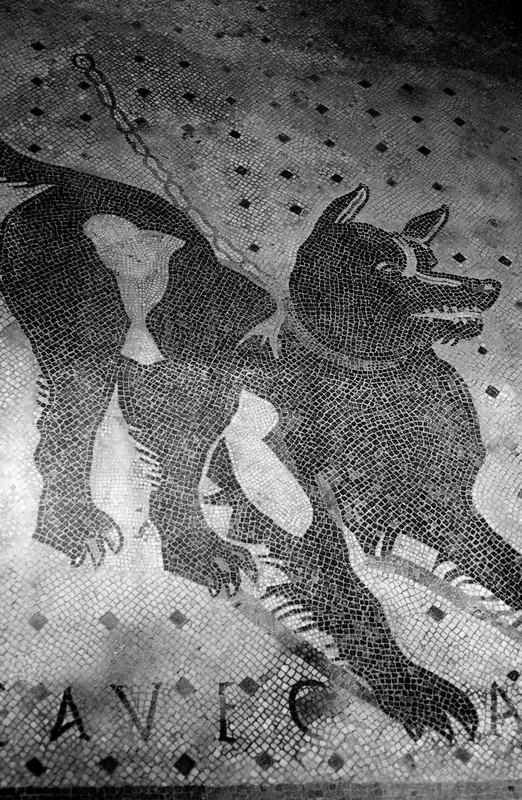 Cave Canem mosaic