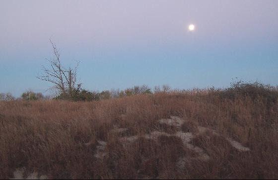 Saturday Nov. 27th - moonset over Hampton Roads