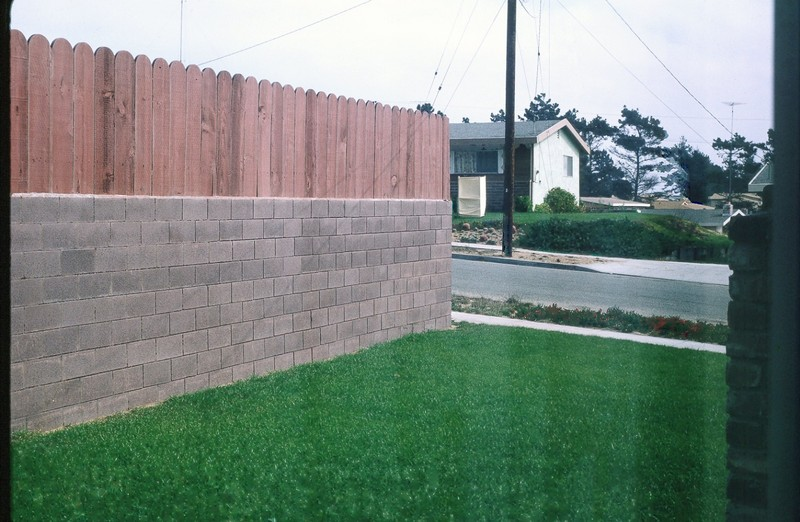 Fence on the north side