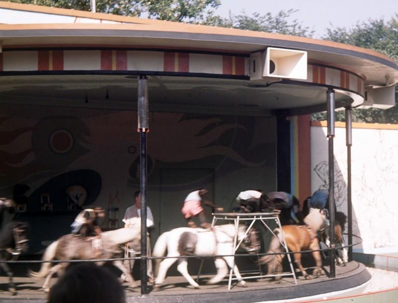 Ponies ridden by monkeys