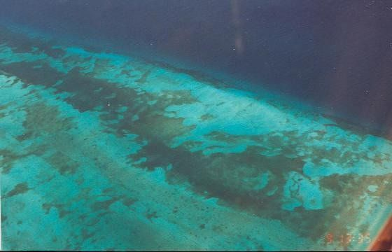 Aerial shot of the Reef - from the plane as I was leaving