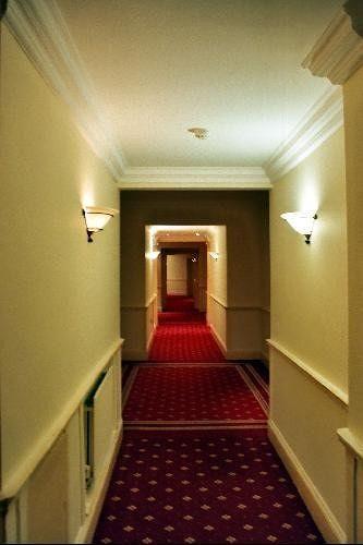 Hotel Corridor (like the Shining?)