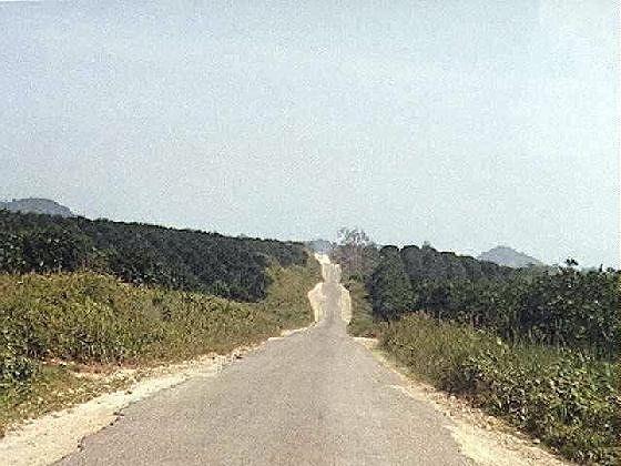 large_42234538667173-paved_road_on..ia_Village.jpg