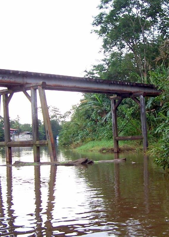 large_4379741-Train_tressle_Tortuguero.jpg