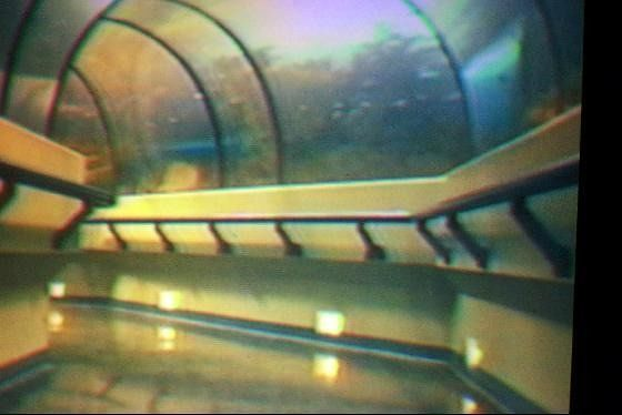 Picture of the tunnel from the film