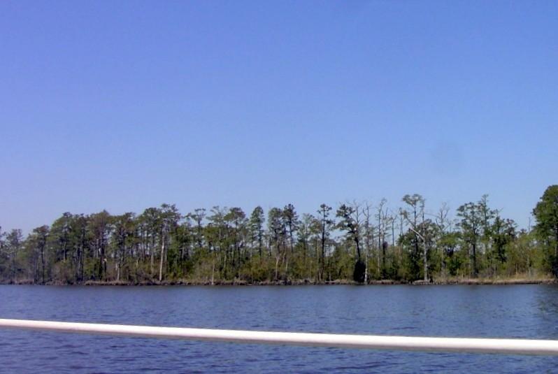 North River shore