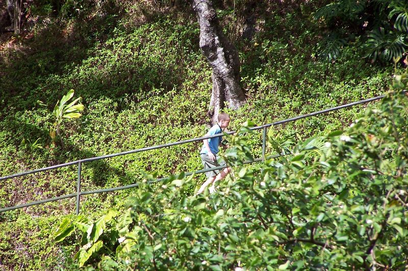 Grandson climbing to the overlook