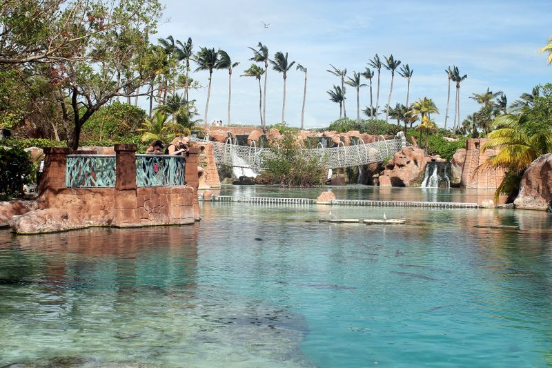 Aquarium Surface Tanks
