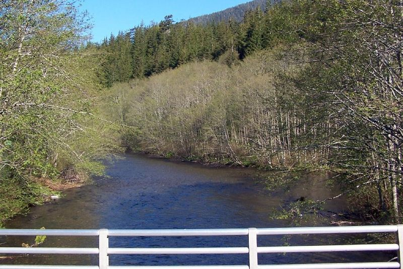 Ketchikan Creek from the Duck
