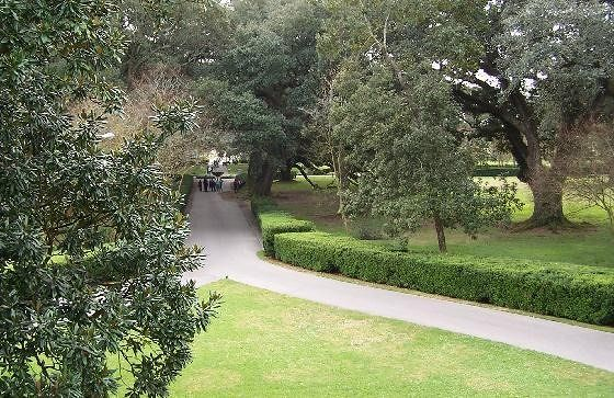 Paths at the rear of Oak Alley