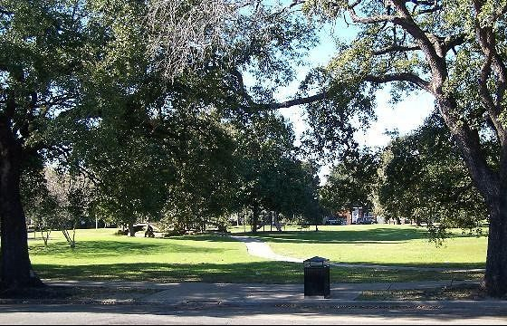 Audubon Park from the St. Charles streetcar