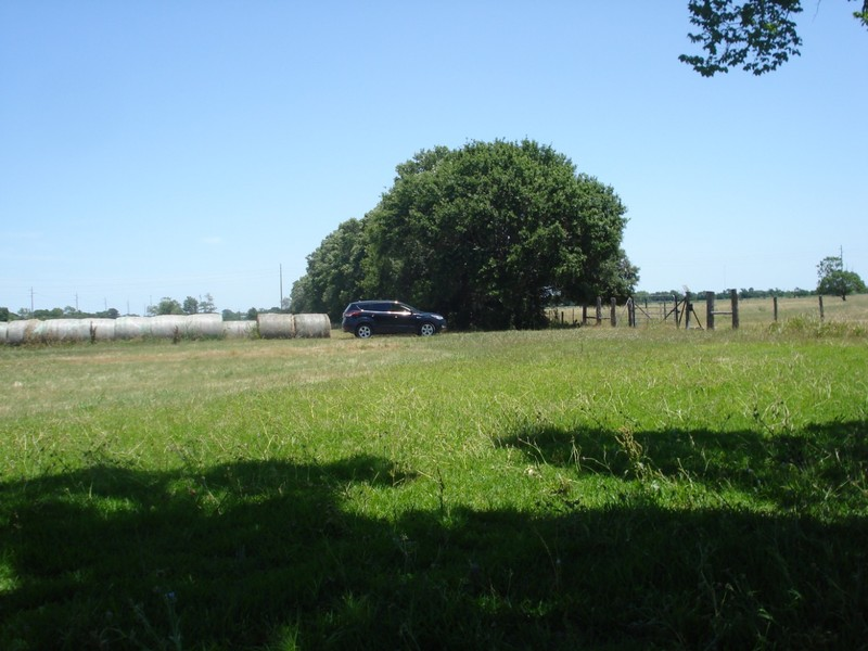 Rental car where we parked next to the haybales to go to Needville Baptist Cemetery