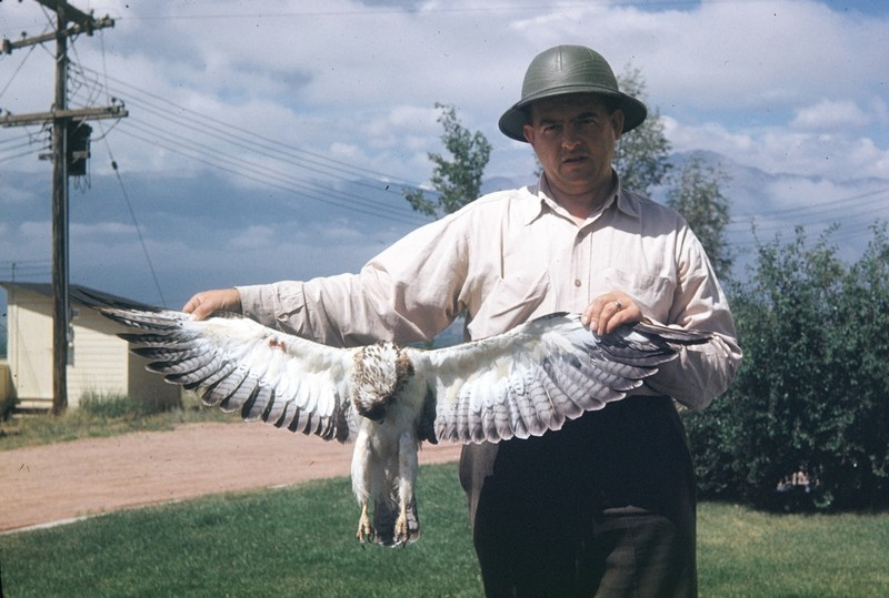 Harry holding eagle