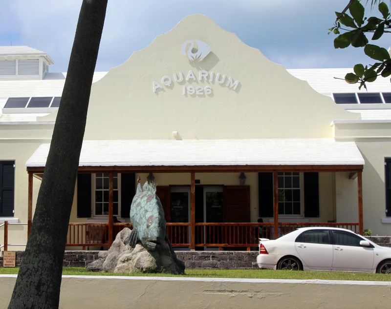 BAMZ (Bermuda Aquarium Museum and Zoo) with a fish sculpture out front made from roof tiles