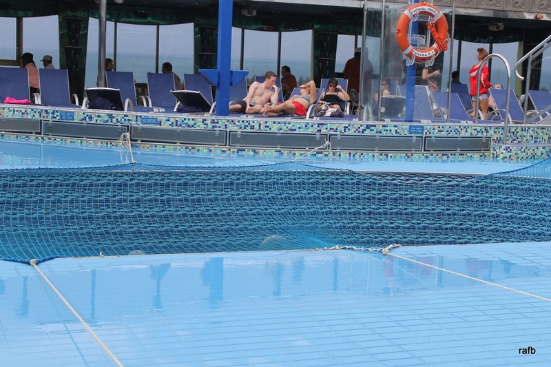 Mesh over the pool