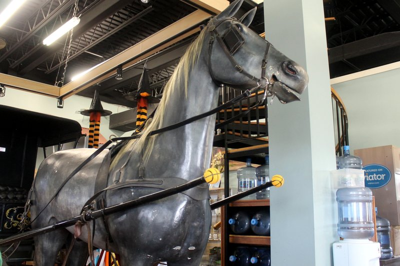 Horse model at the helicopter office