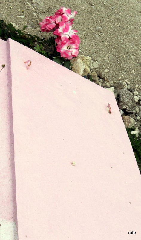 Painted pink grave marker for unknown woman who died in 2011