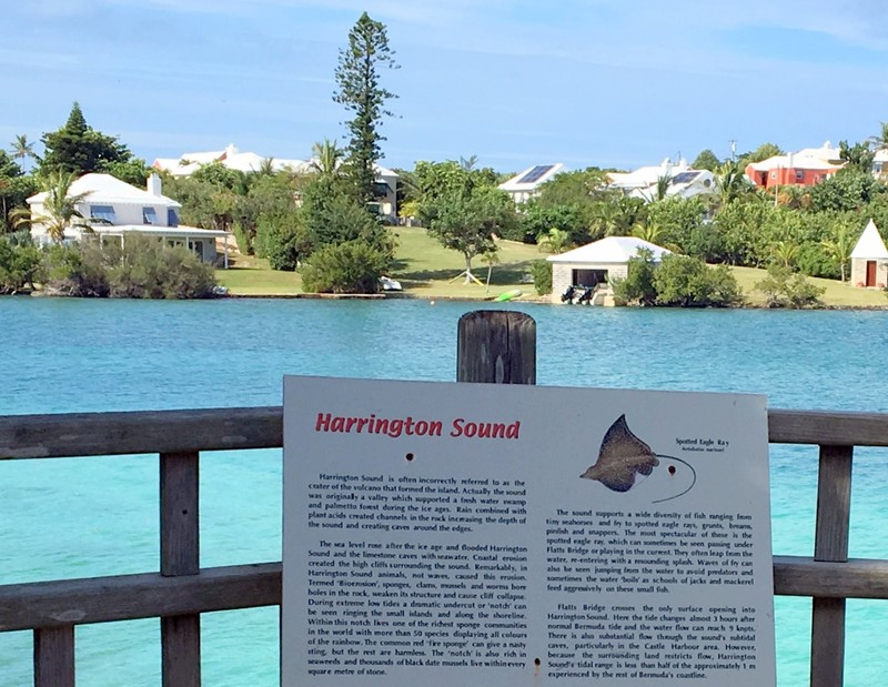Harrington Sound from the zoo
