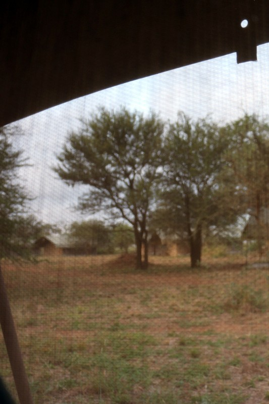 View from the toilet through the screen