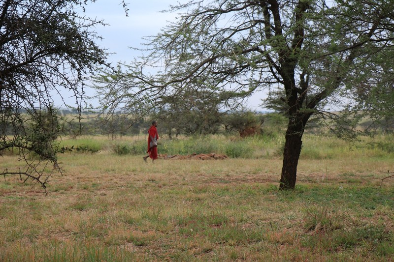 Maasai in Rondo Camp