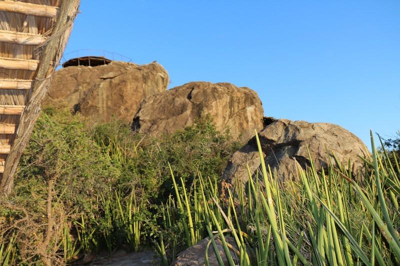 Near Olduvai