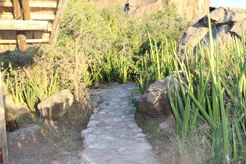 Path at Olduvai
