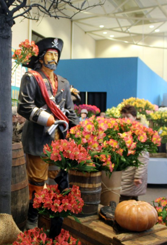 Pirate in the Pavillion