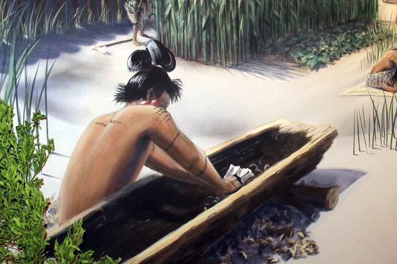 Timucau hollowing out a canoe