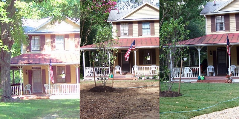 Progress - Left - house with maple tree and A/C.  Middle Maple tree and A/C gone, Right - after landscaping