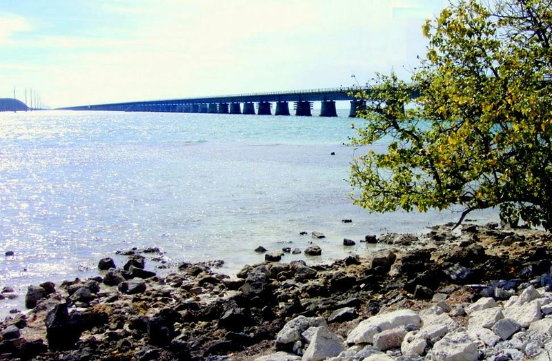 Old 7 Mile Bridge with the old drawbridge not visible