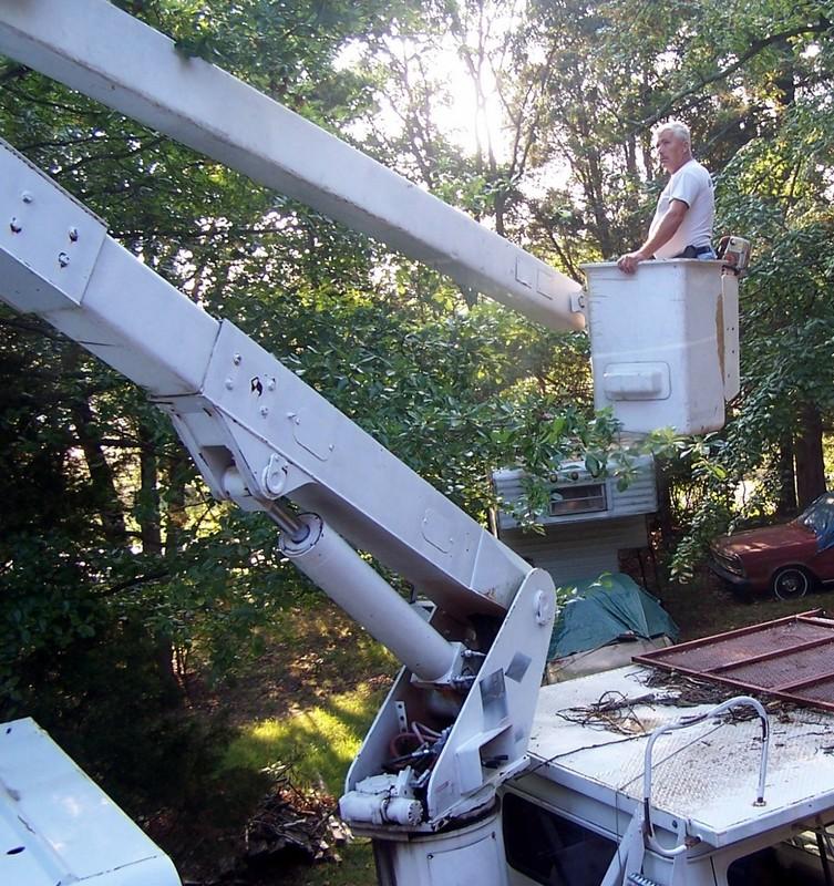 Tree man in the bucket truck