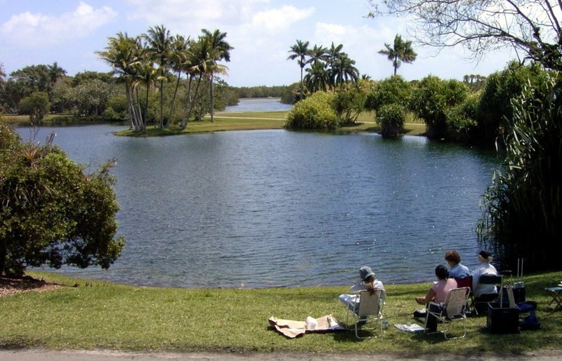 Artists sketching the view