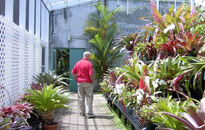 Bob looking at some plants
