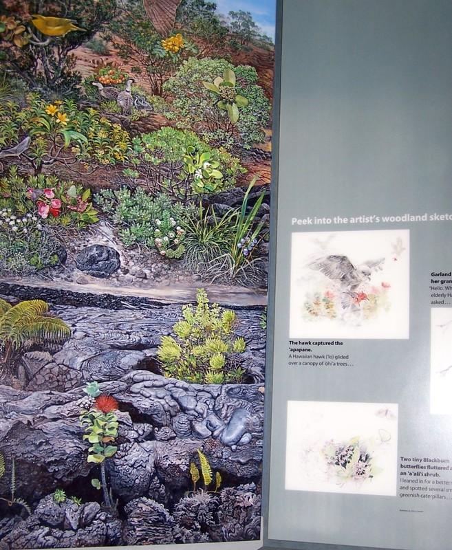Woodlands ecosystem
