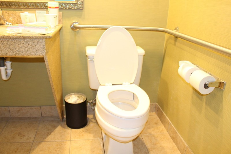 Raised seat toilet