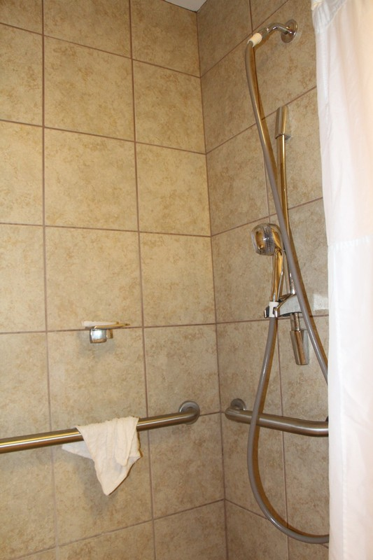 Shower with adjustable shower head and seat