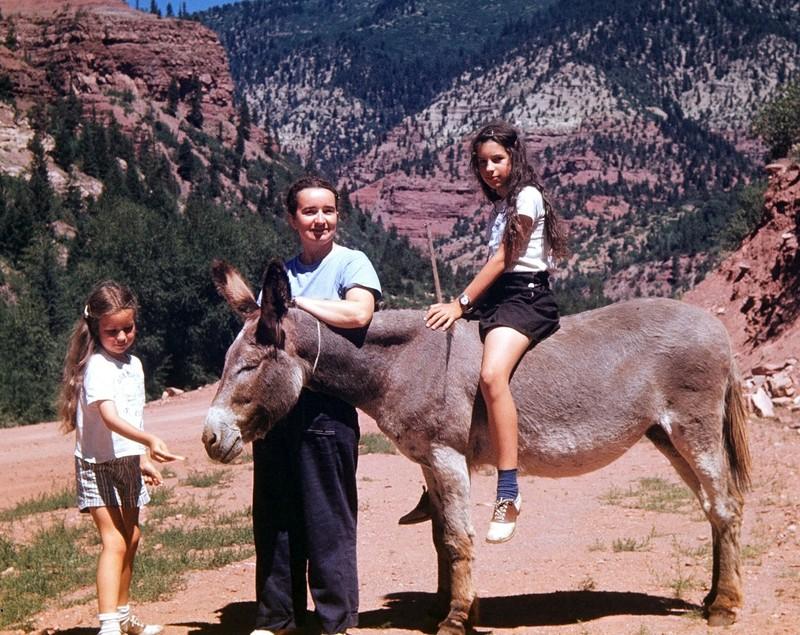 My donkey ride