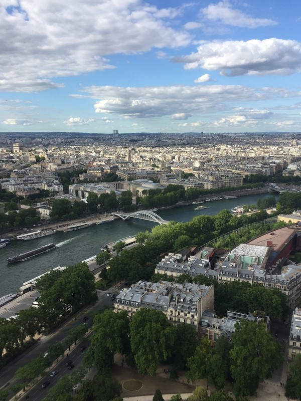 Seine from the 2nd level of the Eiffel tower