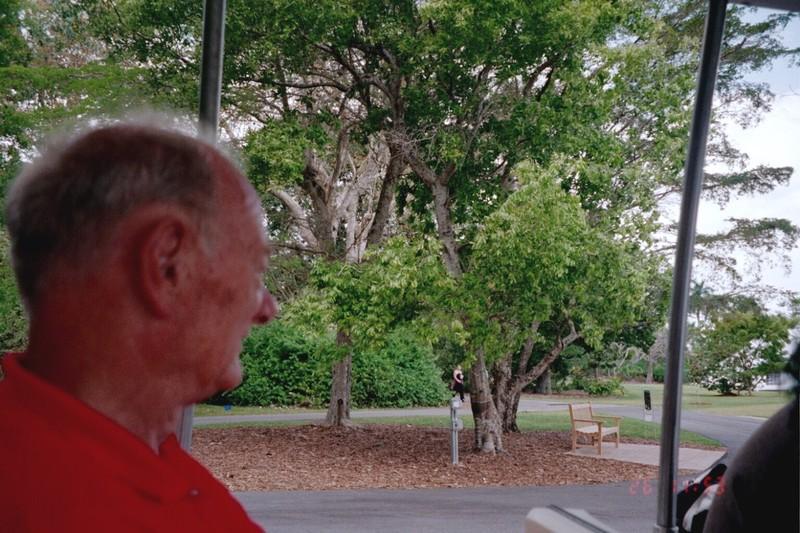 Bob on the tram