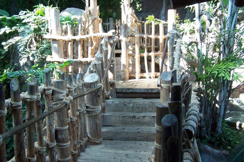 steps in aviary